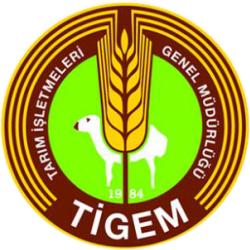 tigem